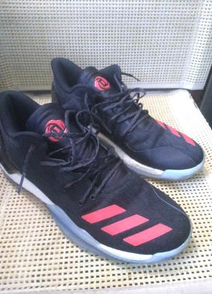 Adidas rose 7 low basketball