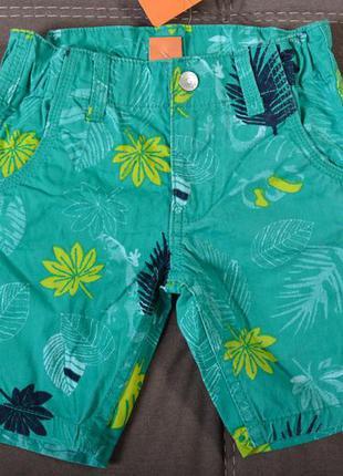 Котоновые шорты итальянского бренда pusblu