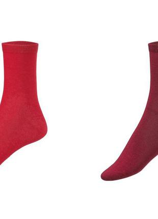 Набор красных носков 2 пары р. 35-38 германия