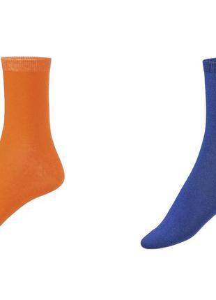 Набор ярких носков 2 пары р. 39-42 германия
