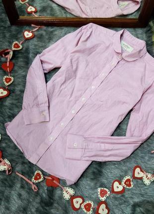 Хлопковая блуза рубашка в тонкую розовую полоску из коттона
