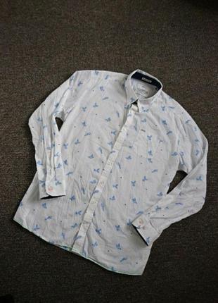 Крутая, стильная рубашка с папугаями