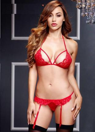 Сексуальный комплект белья арт. 530