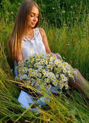Цветы, Букеты.