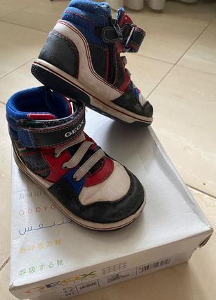 Ботинки демисезонные Geox кожаные на мальчика 22 р