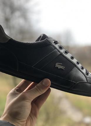 Lacoste шкіряні кросівки оригінал