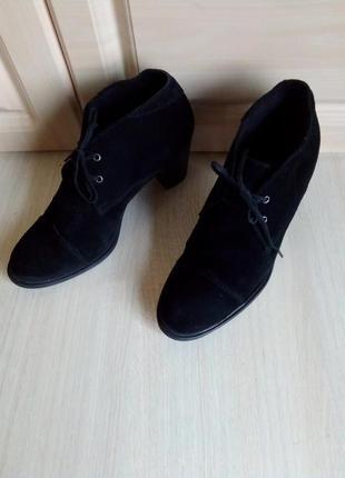 Модельные ботинки carlo pazolini, натур.замша, 38 р. ( 25,5 см)