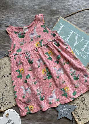 Платье с кактусами h&m 12-18 мес