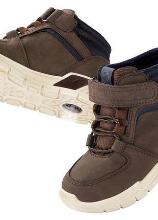 Демисезонные ботинки, хайтопы, lupilu,  30