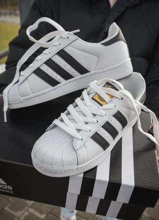 Adidas superstar новые женские кроссовки адидас кожа белый цве...