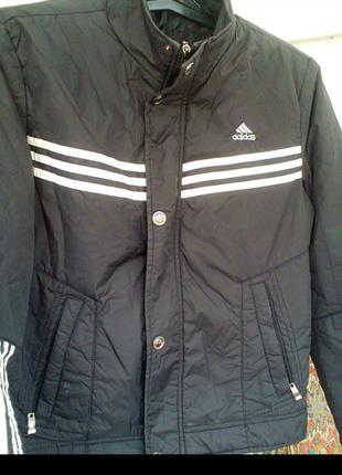 Куртка на синтепоне adidas.