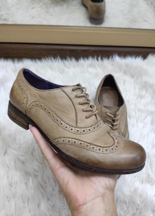 Бежевые оксфорды (лоферы, броги, туфли) на шнурках clarks