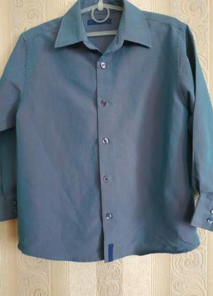 Рубашка на 7 лет хамелеон
