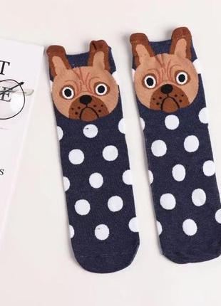 7-39 круті шкарпетки з яскравим принтом носки с собачкой
