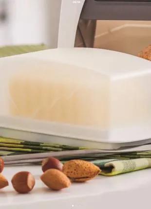 Масленка, Контейнер для сливочного масла Tupperware