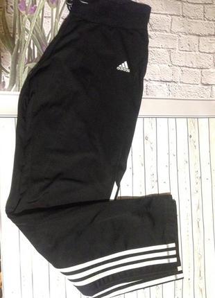 Спортивные штаны adidas костюм