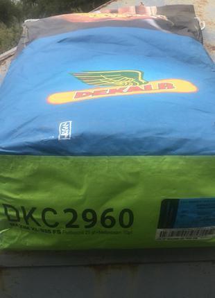 Кукуруза семена Монсанто ДКС 2960 (ФАО 250)