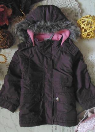 Стильная демисезонная куртка papagino