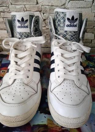 Фирменные кроссовки Adidas.37размер.