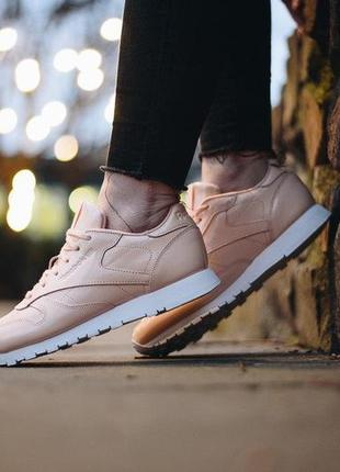 Кроссовки reebok classic leather w cn0771