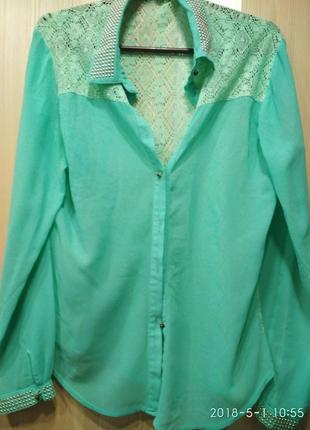 Стильная блуза, нежного цвета спинка кружево