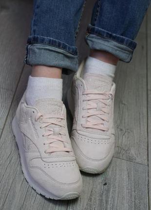 Женские кросовки/жіночі кросівки reebok bs9865 38 розмір 24,5 ...