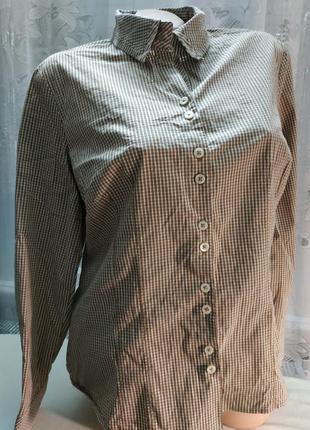 Стильная рубашка в мелкую клетку хлопок