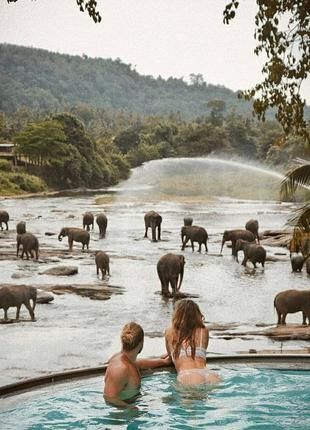 Горящие туры в Шри-Ланку из Кременчуга от Вжух