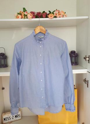 Хлопковая полосатая рубашка длинный рукав next