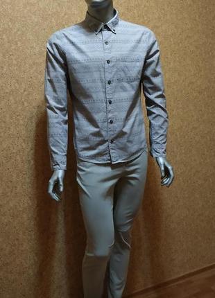 Продам серую рубашку holister  с принтом