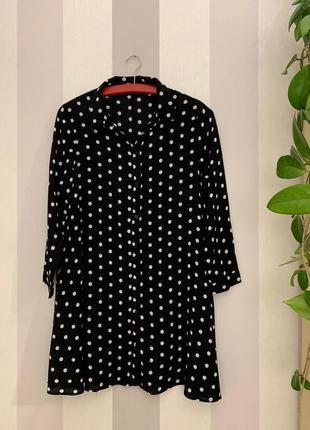 Удлиненная блузка блузон в горох zara, новая!
