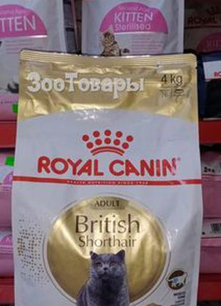 Royal Canin British Shorthair 34 Adult 4 кг/сухой корм для кошки