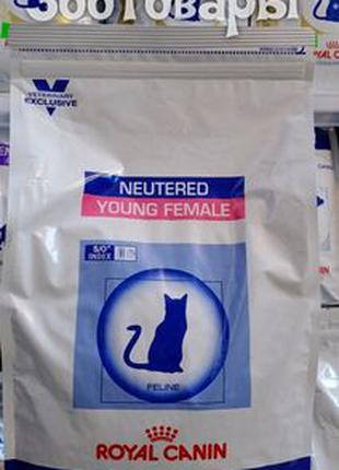 Royal Canin YOUNG FEMALE S/O 3,5кг(ЯНГ ФЕМЭЙЛ) корм для кошек ...