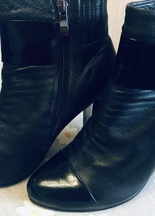 Кожаные ботинки на удобном каблуке magnori летняя скидка!