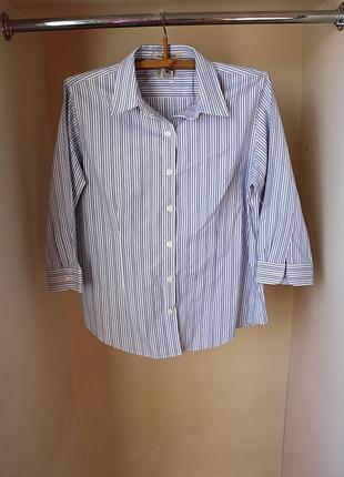 Рубашка в полоску белый голубой натуральная катон wrinkle resi...