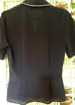 Блуза в горошек st.bernard