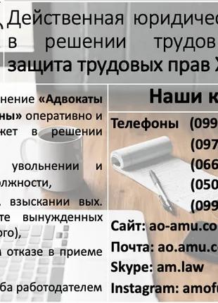 Юрист по трудовым спорам, адвокат по гражданским делам Харьков