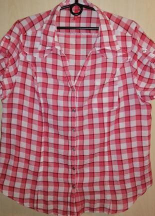 Рубашка женская xlnt