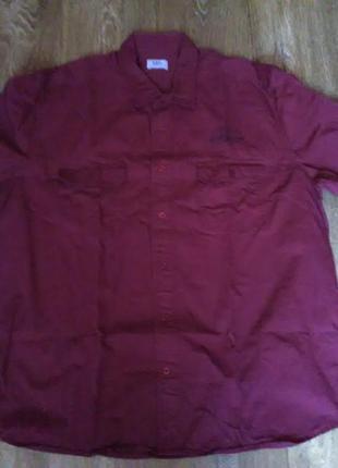 Рубашка хлопок бордо-винный + подарок !!! (сюрприз или на ваш ...