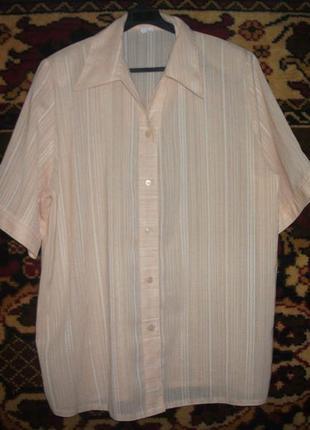 Блузка,рубашка большая  emilia