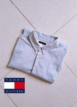 Голубая рубашка tommy hilfiger