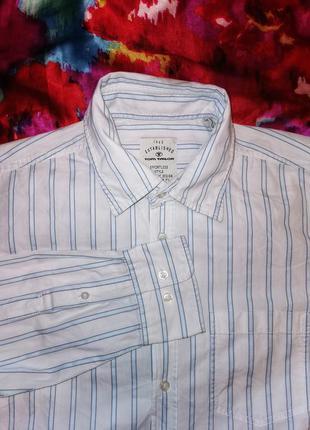 Рубашка в полоску tom tailor коттон хлопок мужская