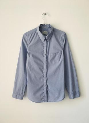 Хлопковая голубая рубашка в мелкую полоску blarney сорочка в с...
