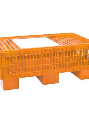 Ящик на піддоні для курей, бройлерів на піддоні