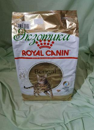 Royal Canin (Роял Канин) BENGAL 10 кг