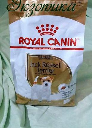 Royal Canin Jack Russell Adult( роял Джек Рассел 7.5 кг)