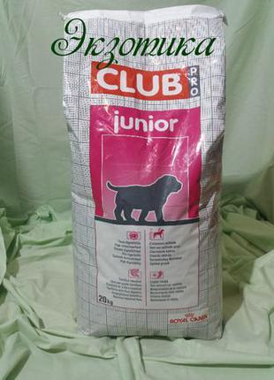 Royal Canin Club Pro Junior 20 КГ( роял про юниор)