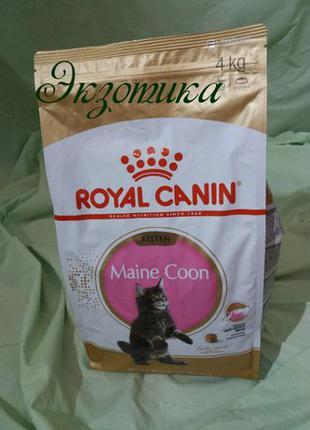 Royal Canin Main Coon Kitten 4 кг сухой корм для котят