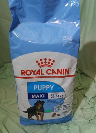 Royal Canin PUPPY MAXI (Maxi Junior)