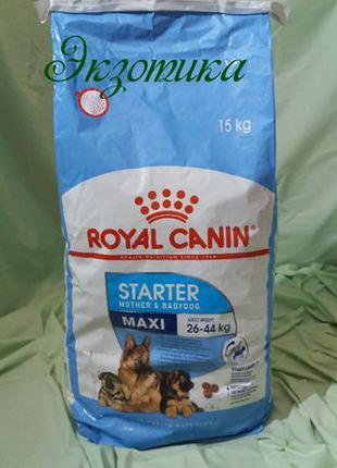 Royal Canin Maxi Starter 15кг (Роял Канин Макси Стартер)